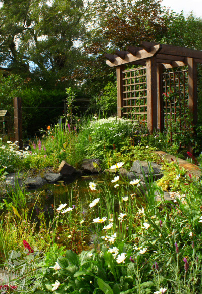 pond and trellis